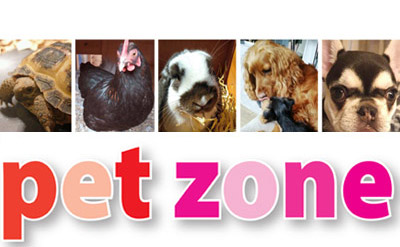 link to pet zone